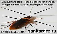 СЭС г. Павловский Посад Московская область профессиональная дезинсекция тараканов