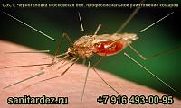 СЭС г. Черноголовка Московская обл. профессиональное уничтожение комаров