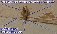 СЭС ВАО район Вешняки уничтожение тараканов, улица Юности, Сергей и Неля.