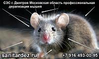 СЭС г. Дмитров Московская область профессиональная дератизация мышей