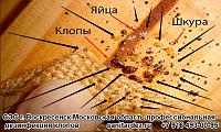 СЭС г. Воскресенск Московская область профессиональная дезинфекция клопов