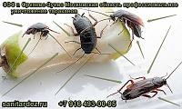 СЭС г. Орехово-Зуево Московская область профессиональное уничтожение тараканов